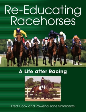 Re-Educating Racehorses A Life after Racing