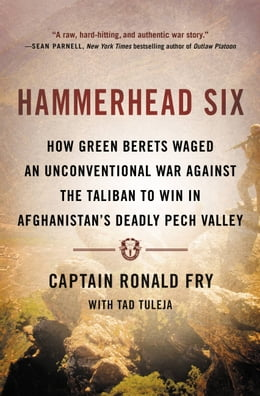 Book Hammerhead Six: How Green Berets Waged an Unconventional War Against the Taliban to Win in… by Ronald Fry