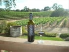 Paso Robles Wineries: An Essential Guide to Visiting Paso Robles Wineries and Other Romantic Stops Along The Way by Shari Lavin