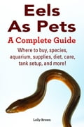 Eels As Pets. Where to buy, species, aquarium, supplies, diet, care, tank setup, and more! A Complete Guide c6866833-393d-43e1-a822-22170b2963ac