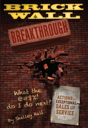 Brick Wall Breakthrough. What The !@#$ Do I Do Next? : Actions for Exceptional Sales & Service. by Shelley F Hall
