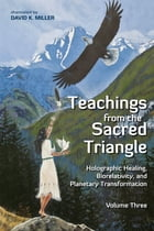 Teachings from the Sacred Triangle, Volume 3 by David K. Miller