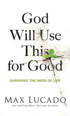 God Will Use This for Good Surviving the Mess of Life