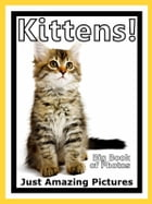 Just Kitten Photos! Big Book of Photographs & Pictures of Baby Cats & Cat Kittens, Vol. 1 by Big Book of Photos