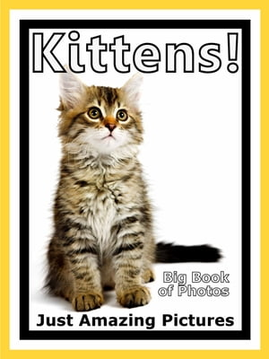 Just Kitten Photos! Big Book of Photographs & Pictures of Baby Cats & Cat Kittens,  Vol. 1