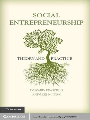Social Entrepreneurship Theory and Practice