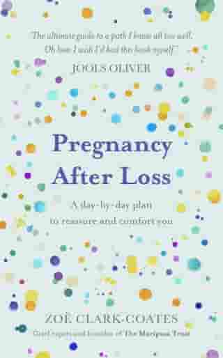 Pregnancy After Loss: A day-by-day plan to reassure and comfort you