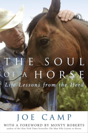 The Soul of a Horse Life Lessons from the Herd