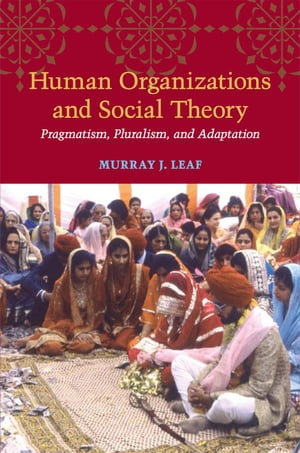 Human Organizations and Social Theory Pragmatism,  Pluralism,  and Adaptation
