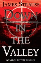 Down In The Valley: An Arch Patton Adventure by James Strauss