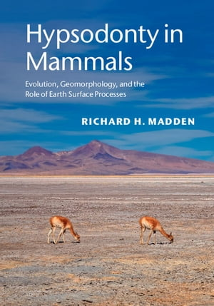 Hypsodonty in Mammals Evolution,  Geomorphology,  and the Role of Earth Surface Processes
