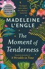 The Moment of Tenderness Cover Image