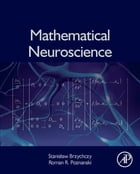 Mathematical Neuroscience by Stanislaw Brzychczy
