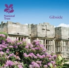 Gibside by Gemma Hall