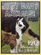 120 Pictures: Just Baby Animals! by Big Book of Photos