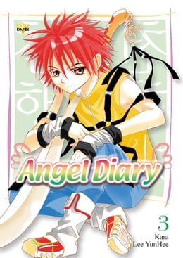 Book Angel Diary, Vol. 3 by YunHee Lee