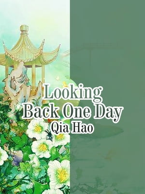 Looking Back One Day: Volume 1