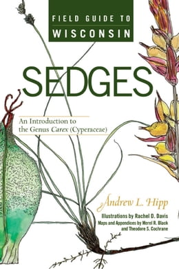 Book Field Guide to Wisconsin Sedges: An Introduction to the Genus Carex (Cyperaceae) by Hipp, Andrew