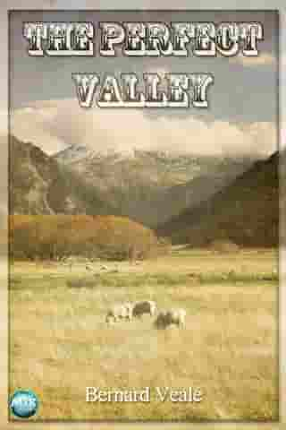 The Perfect Valley by Bernard Veale