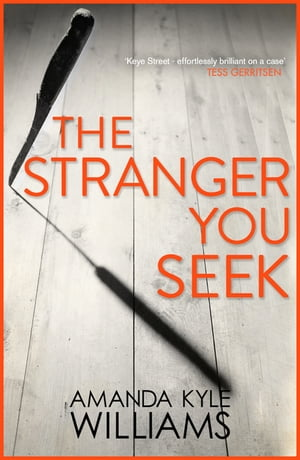 The Stranger You Seek (Keye Street 1) An unputdownable thriller with spine-tingling twists