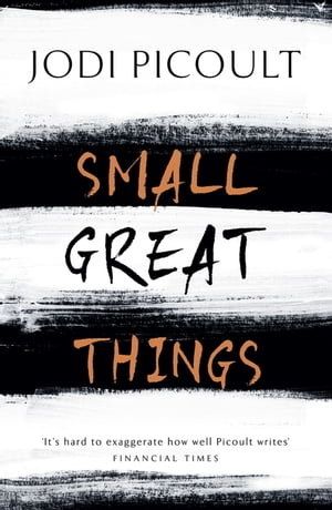 Small Great Things 'To Kill a Mockingbird for the 21st Century'