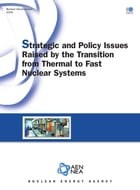 Strategic and Policy Issues Raised by the Transition from Thermal to Fast Nuclear Systems by Collective