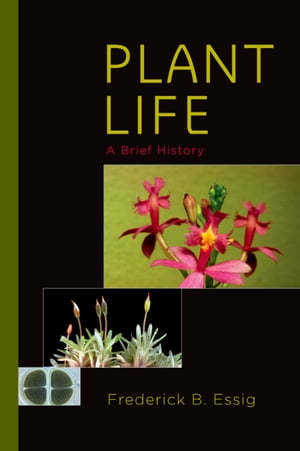 Plant Life A Brief History