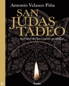 San Judas Tadeo by Antonio Velasco Piña