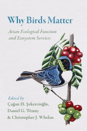 Why Birds Matter Avian Ecological Function and Ecosystem Services