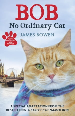 Bob No Ordinary Cat