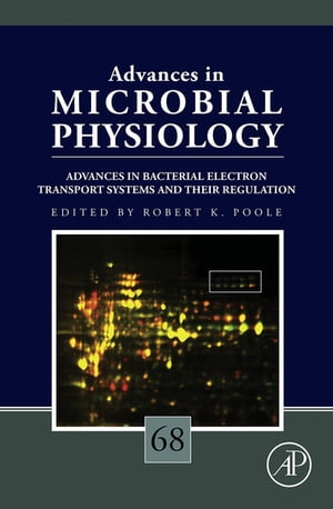 Advances in Bacterial Electron Transport Systems and Their Regulation