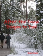After the Snow Began to Fall by Robert Butler