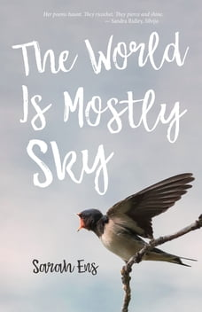 The World is Mostly Sky