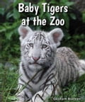Baby Tigers at the Zoo 89656a59-9982-457e-a8c1-39f304e0301f