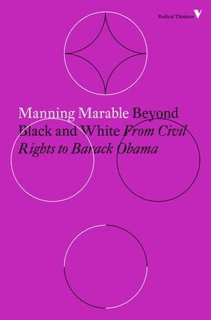 Beyond Black and White Transforming African-American Politics