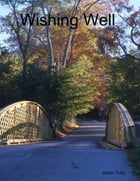 Wishing Well by Justin Tully