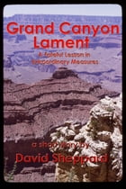 Grand Canyon Lament, A Fateful Lesson in Extraordinary Measures by David Sheppard
