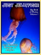 Just Jellyfish Photos! Big Book of Jellyfish Photographs & Pictures Vol. 1 by Big Book of Photos