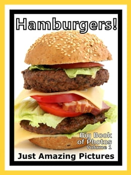Book Just Hamburger Sandwich Photos! Big Book of Photographs & Pictures of Hamburgers Sandwiches, Vol. 1 by Big Book of Photos