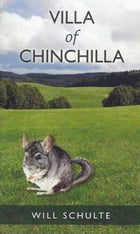 Villa of Chinchilla by Will Schulte