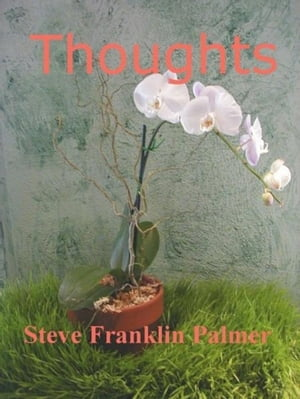Thoughts by Steve Franklin-Palmer