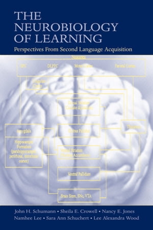 The Neurobiology of Learning Perspectives From Second Language Acquisition