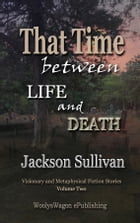 That Time between LIFE and DEATH V2: Visionary and Metaphysical Fiction Stories by Jackson Sullivan