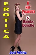 Erotica: A Hot Encounter: 6 Books Bundle