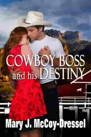 Cowboy Boss and his Destiny: Double Dutch Ranch Series: Love at First Sight, #1