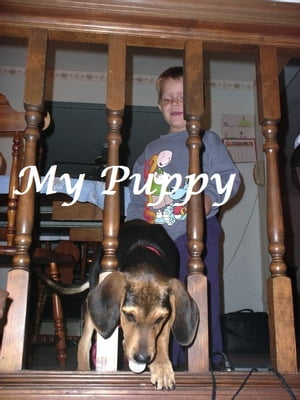 My Puppy (childrens picture book)