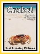 Just Crab Photos! Big Book of Photographs & Pictures of Crabs, Vol. 1 by Big Book of Photos