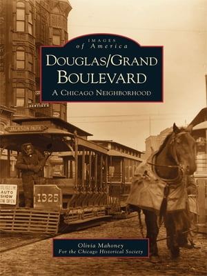 Douglas/Grand Boulevard: A Chicago Neighborhood