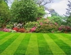 Master Your Lawn: The Essential Lawn Care Guide For Beginners by Guy LaForge