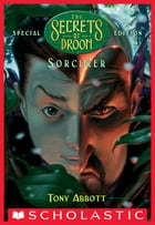 Sorcerer (The Secrets of Droon: Special Edition #4) by Tony Abbott